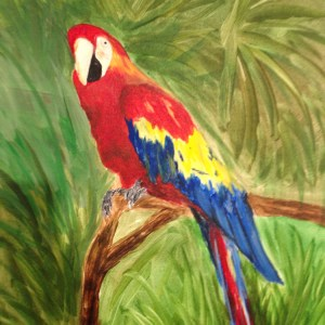 pnp-parrot-janie