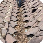Performing maintenance on life tile roof.