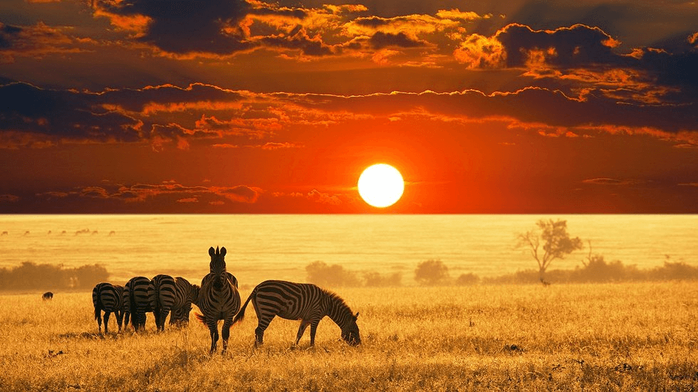 Tanzania - Best Sunset Locations Around The World