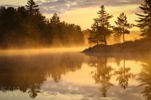 Reflective Mornings