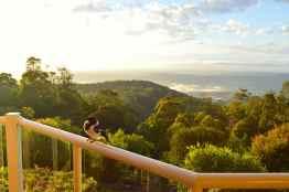Butcherbird and view, Tamborine