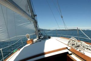 Sailing tours and lessons