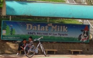 Dalat_Dalat Milk Sign