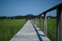The Dock that extends into the marsh