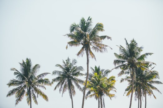 Sunshinestories-surf-travel-blog-YT8A8062