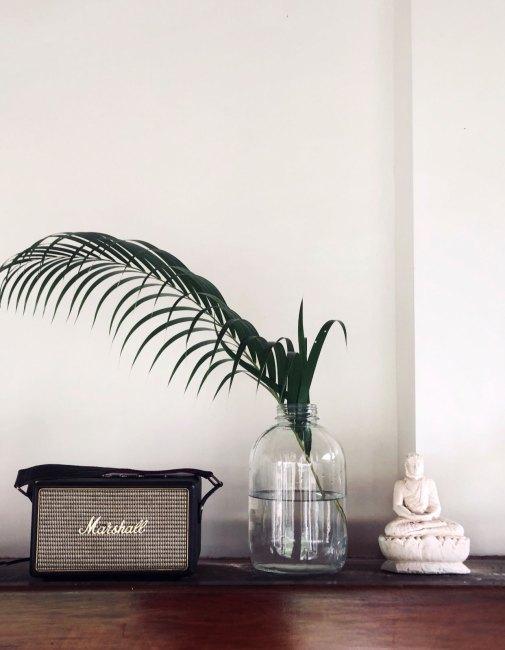 palmice