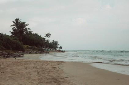 surfyogaretreatcampsrilanka_MG_1358