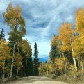 Fall drive near Glenwood Springs, CO