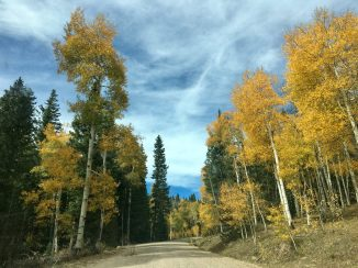 Fall drive near Glenwood Springs, CO