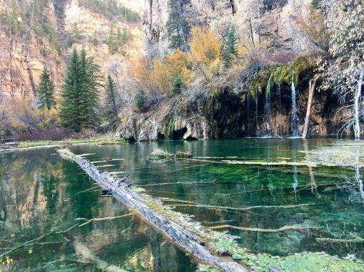 This mysterious log remains suspended in the water at Hanging Lake.