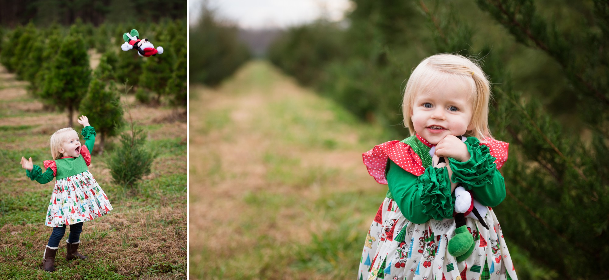 Christmas Tree Farm Family Sessions Charlotte Lifestyle