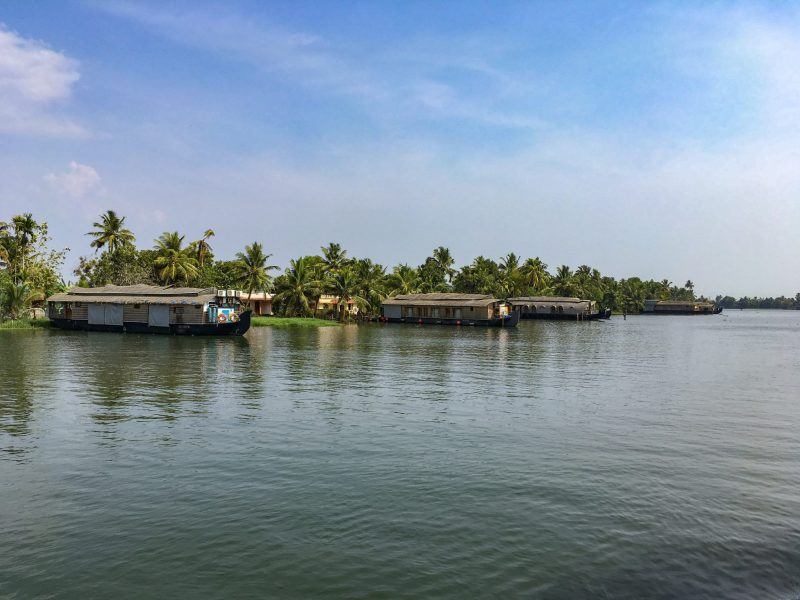 houseboats parked in alleppey