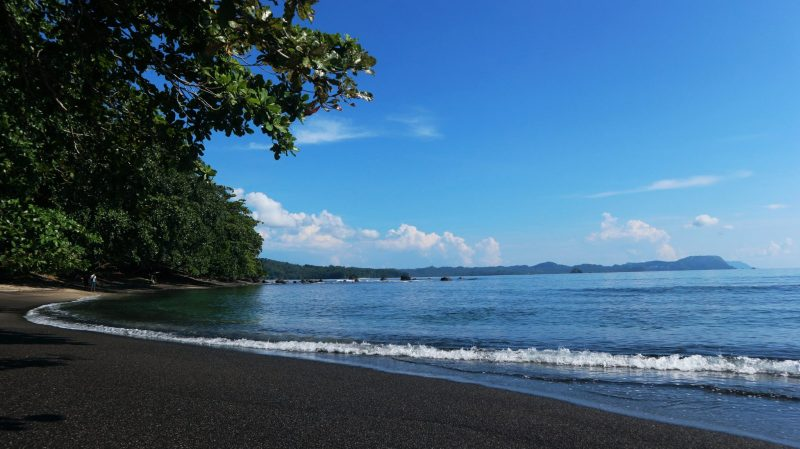 black sand beaches of tangkoko with trees and clear sea