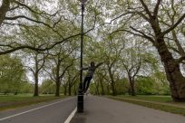 Tegan standing on the side of a light post holding on with one arm and the other outstretched, trees on either side