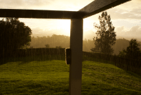 Sun shower in the backyard, golden sky, rain falling down in sheets, wooden poles for the patio in the foreground, trees in the background