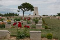 Red flowers amongst the Lone Pine tombstones