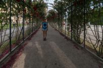 Tegan walking down an archway walkway overgrown with green bushes