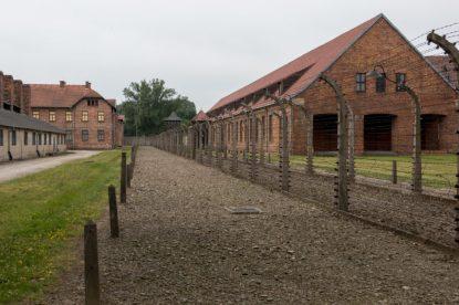 Fences within Aushwitz