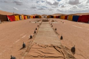 Our camp in the desert! Tents on either side, rugs down the middle and outdoor laterns lining the rugs