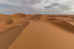 Dunes of the Sahara Desert