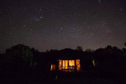 Incredible stars lighting up the sky over our cabin