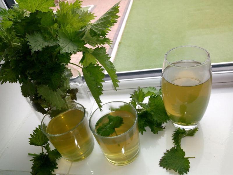 tratamente naturiste pe baza de urzica decoct, ceai, infuzie,