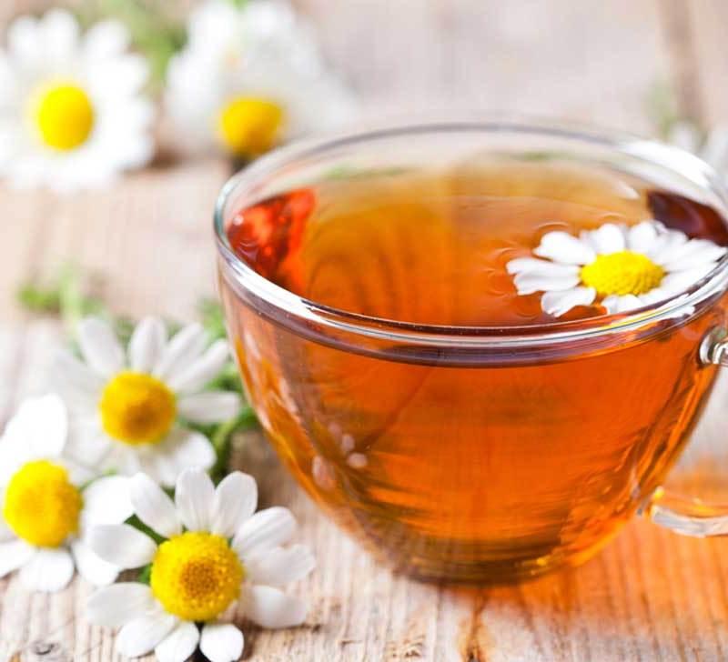 o cana de ceai de musetel