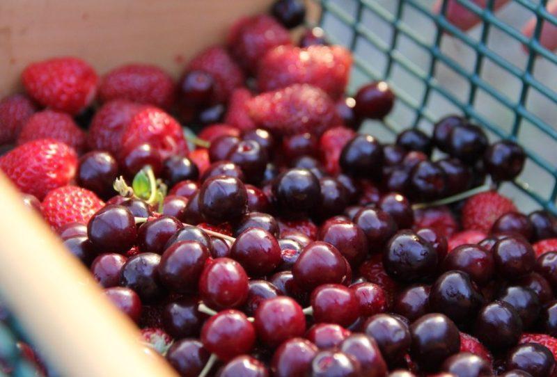 fructe, cirese, capsuni,