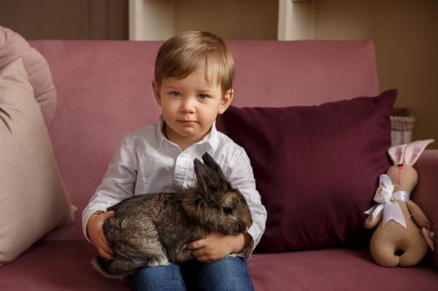 carnea de iepure la copii