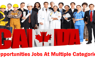 Private Company Job Vacancies in Canada