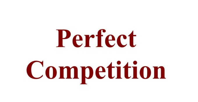 Perfect competition and How to Apply in Our Market