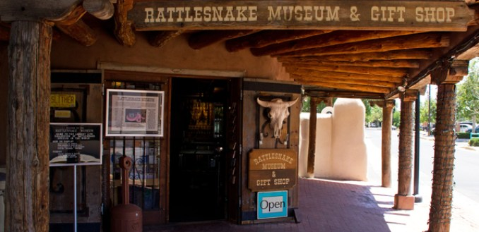 The Rattlesnake Museum
