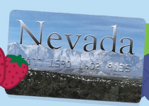 NevadaEBT Card Balance