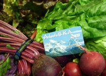 Alaska EBT Card Balance: