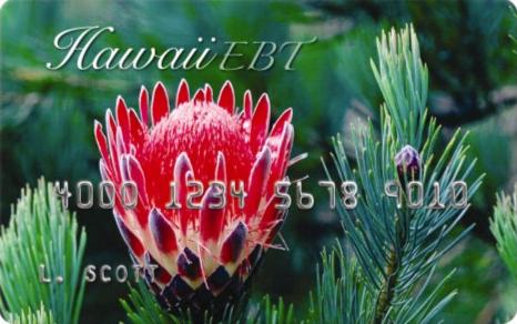 HawaiiEBT Card Balance