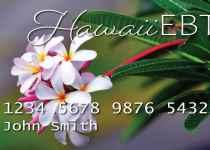 Hawaii SNAP Benefits & The Eligibility Criteria