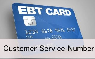EBT Customer Service Numbers