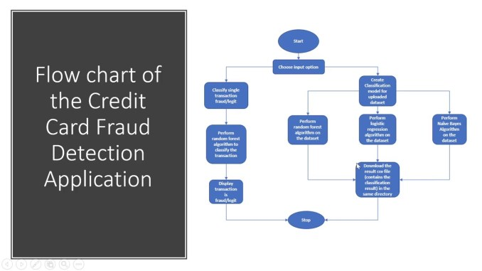 Credit Card Fraud Detection - Causes, Prevention & System of detecting