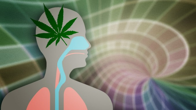 How to Get Marijuana out of the Body Faster