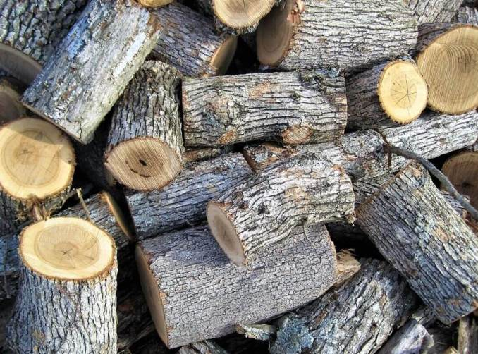 free firewood near me