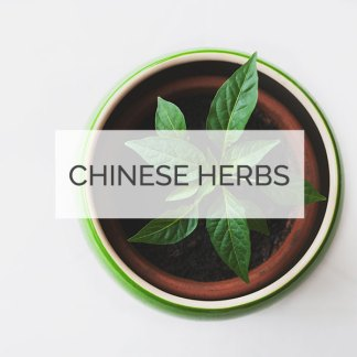 Chinese Herbal Medicine Minneapolis