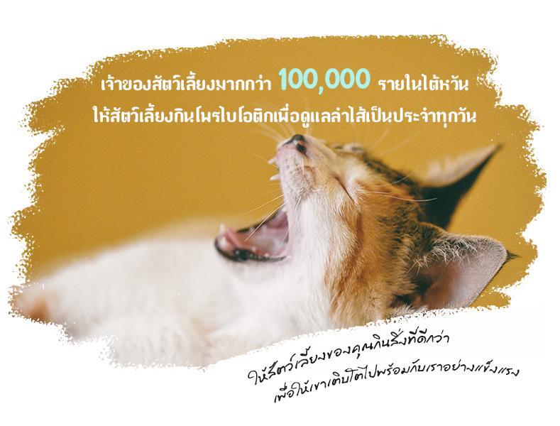เจ้าของสัตว์เลี้ยงมากกว่า 100,000 รายในไต้หวัน