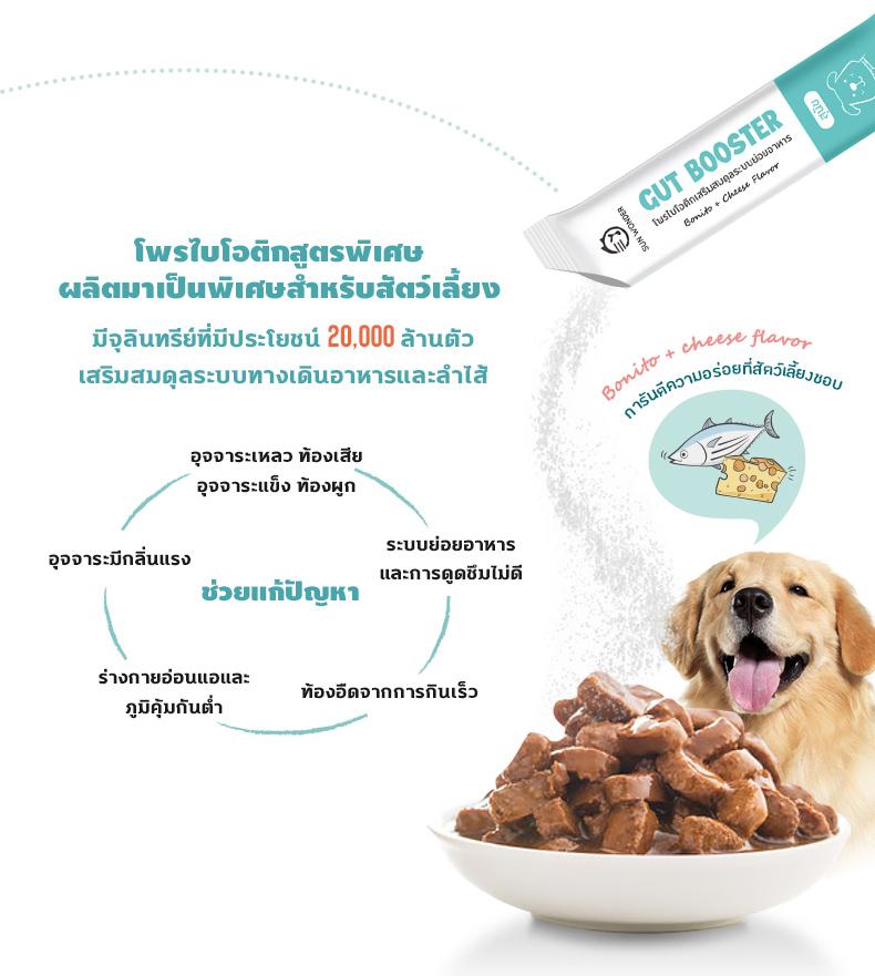 เพิ่มแบคทีเรียดี = เพิ่มจุลินทรีย์ สำหรับสุนัข