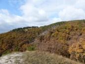 Fekete-hegyek a Tarnai-pihenőről
