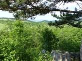 pilisborosjenői kilátás