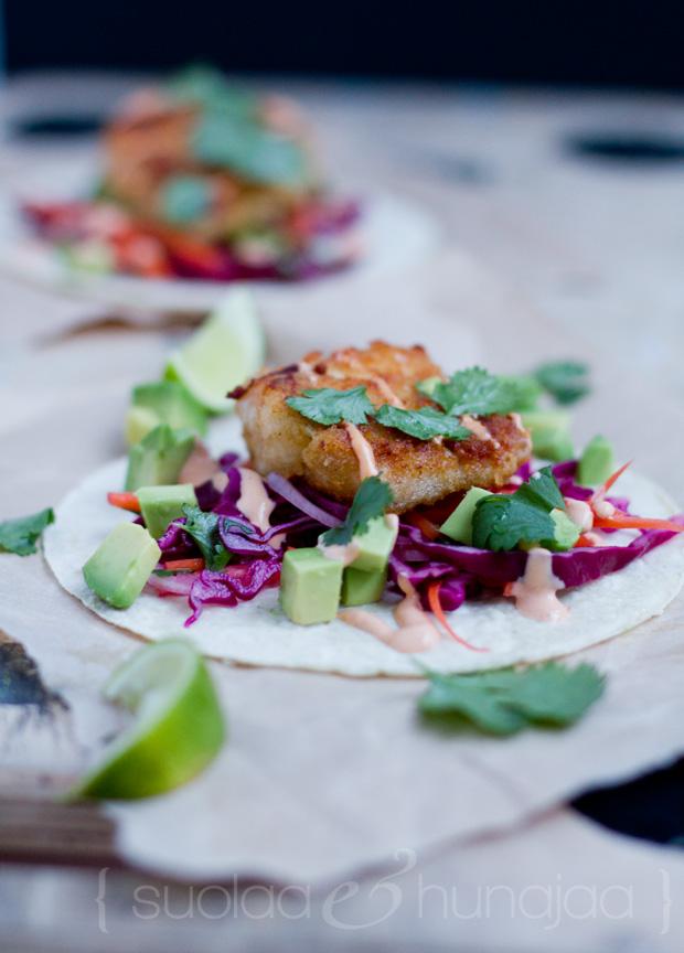fish-tacos-suolaajahunajaa