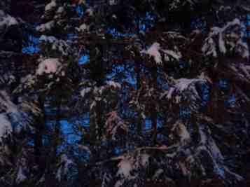 Normaali kuva pimeässä