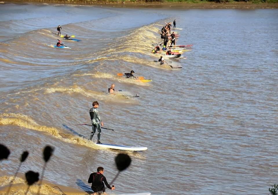 Surfez le mascaret en Paddle