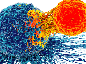 boost immune system coronavirus