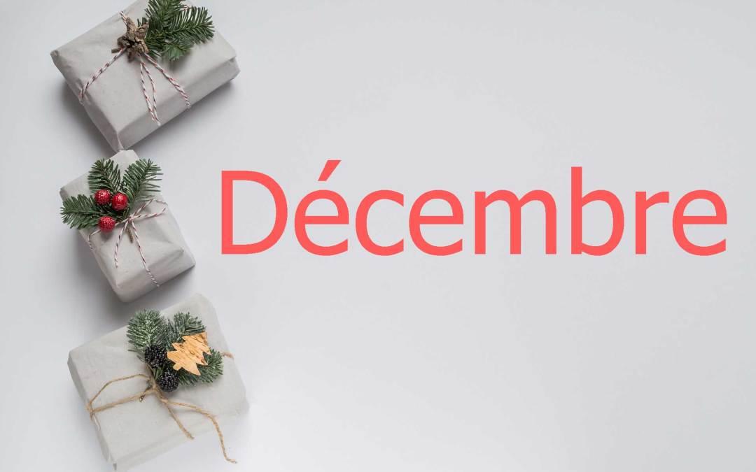 Fêtez Noël avec les recettes de décembre !